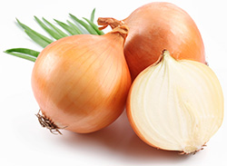 onion ingredient